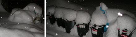 Müll unter Schnee begraben