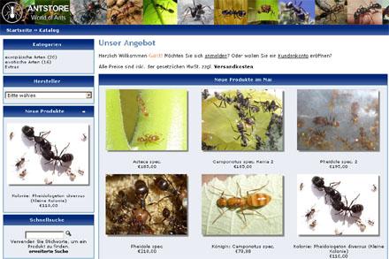 Ameisenshop