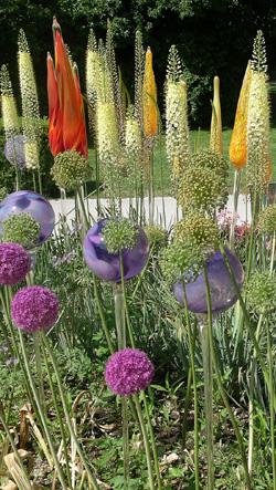 Glas und Blumen