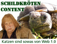Schildkröten-Content