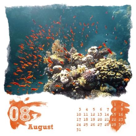 Digitalender 09 - August