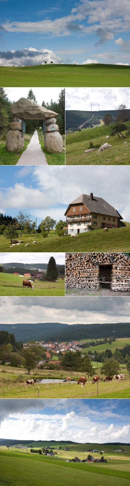 schwarzwald_landschaft